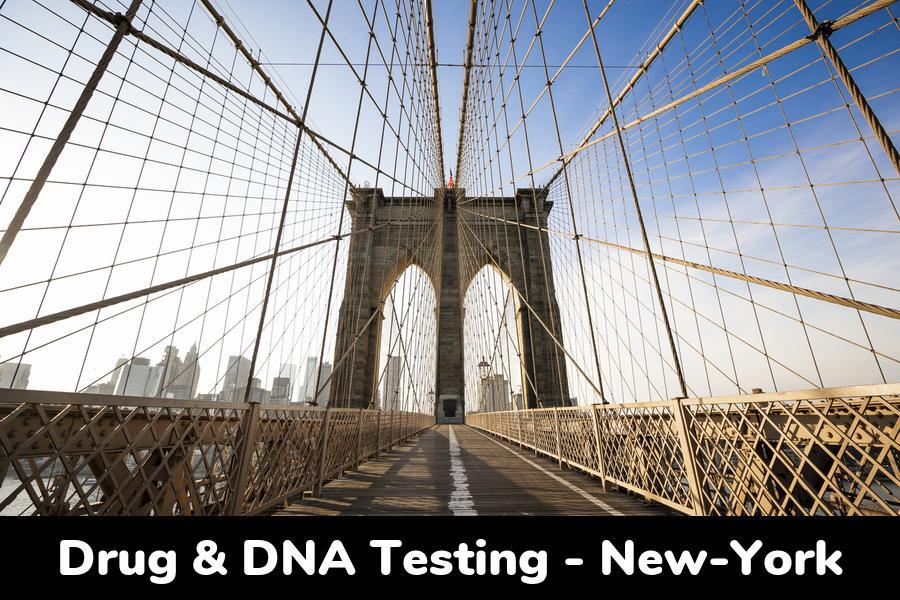 New York DNA & Drug Testing: Clinic Locations by City in NY