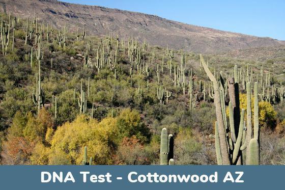 Cottonwood AZ DNA Testing Locations