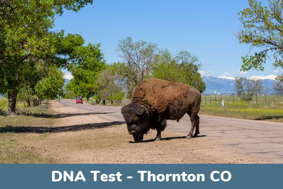 Thornton CO DNA Testing Locations