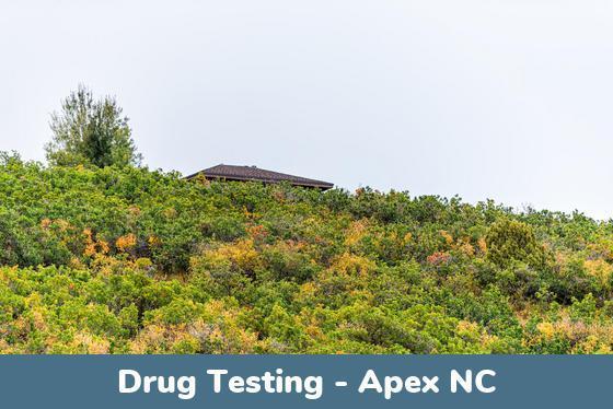 Apex NC Drug Testing Locations