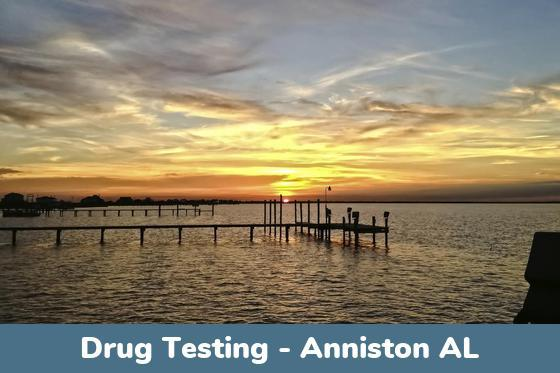 Anniston AL Drug Testing Locations