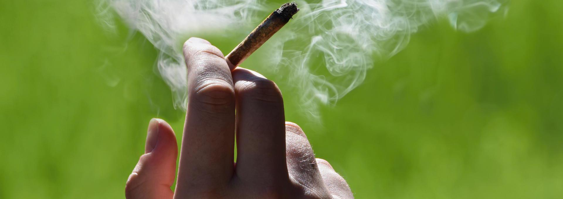 Marijuana (THC, Cannabis) Drug Test - info-hero